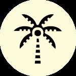 zuckerersatz-kokosbluetenzucker-icon